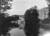 wilse-1909-3